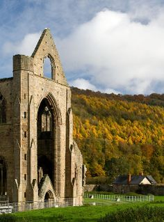 Tintern Abbey - Wye Valley, Monmouthshire, Wales