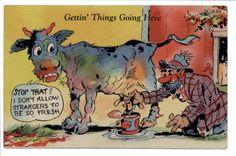 Comic Cartoon postcard: Scruffy Man Milking Cow 1946 Funny Cows, Scruffy Men, Moose Art, Cartoon, Comics, Animals, Animales, Animaux, Animal