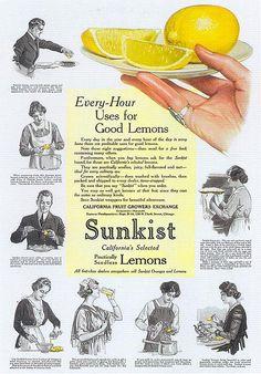 Sunkist Lemons, 1916 by Gatochy, via Flickr