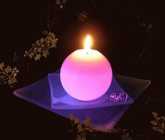 The perfect CandleLight Pink FlameOn Animated GIF for your conversation. Discover and Share the best GIFs on Tenor. Beautiful Flowers Images, Beautiful Candles, Candels, Candle Lanterns, Nightmare Before Christmas Drawings, Flickering Lights, Candle In The Wind, Pink Candles, Light My Fire