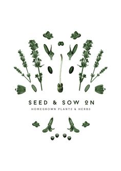 Seed & Sow