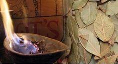 Está curioso(a) para saber por que motivo deve-se queimar e cheirar a fumaça das folhas de louro?Esta é uma velha receita.Mas, antes de saber por que ela deve ser feita, vale a pena saber um pouco sobre o louro, não é mesmo? O louro é usado desde os tempos antigos.Já foi símbolo de poder: reis e