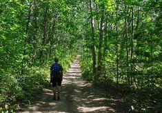An Easy Hike on the Oak Ridges Moraine Trail - Hike Bike Travel Rustic Italian, Italian Wine, Rice Lake, Discover Canada, Sand And Gravel, Oak Ridge, Large Animals, Hiking Trails, Brighton