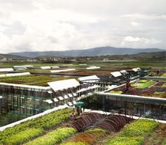 Concept for Rooftop Farming - William McDonough + Partners