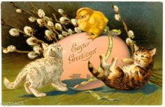 Easter Cats with Egg and Chick Vintage 1908 Vintage Greeting Cards, Vintage Postcards, Easter Cats, Happy Easter, Easter Chick, Decoupage, Easter Wishes, Cat Cards, Here Kitty Kitty