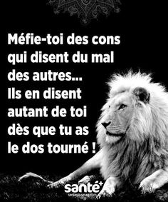 les plus beaux proverbes à partager : #citations #vie #amour #couple #amitié … – Citation Magazine Motivational Quotes For Life, Life Quotes, Inspirational Quotes, Quotes Motivation, Philosophy Quotes, French Quotes, Some Words, Positive Attitude, Positive Affirmations