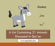 21 Animals Mentioned in Quran List Of Characters, Disney Characters, Fictional Characters, Holy Quran, Dog Names, Pet Birds, Holi, Winnie The Pooh, Verses