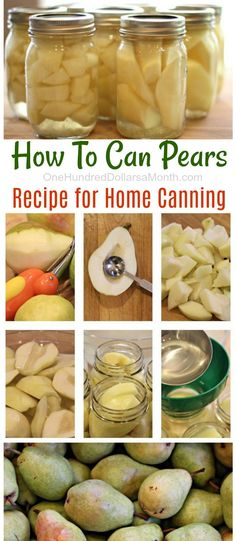 How To Can Pears: Canning Pears, Canning Recipes, Pear Recipes, Canned Pears, Recipes with Pears. Canning Pears, Canning Tips, Easy Canning, Canning Labels, Home Canning Recipes, Cooking Recipes, Vitamix Recipes, Canning Peach Recipes, Blender Recipes