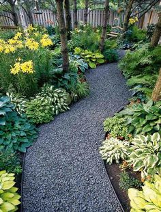 Hosta & fern path - so rich in color & texture! like the greens here - bed in pool area w/ lg. metal tub planter, edge w/ boxwood/monkeygrass.. river pebble mulch..