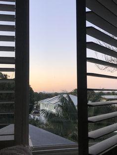 Bel Air, Palm Trees, Night, Lighting, Palm Plants, Lights, Lightning