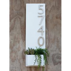 x White Succulent Hanging Planter & Metal Address Plaque - Vertical Wall Planter with Brushed Aluminum Address Numbers Succulent Hanging Planter, Vertical Wall Planters, Planter Pots, Succulent Wall, Succulent Terrarium, Concrete Planters, Hanging Planters, Address Plaque, Address Numbers