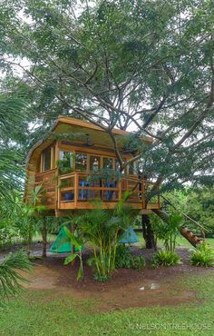 This breezy backyard treehouse on Kauai is the perfect spot for music jam sessions or just some laidback R&R. Backyard Treehouse, Treehouse Cabins, Backyard House, Large Backyard, Treehouses, Adult Tree House, Tree House Plans, Beautiful Tree Houses, Cool Tree Houses
