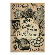 antique flower seeds advertising - Google Search