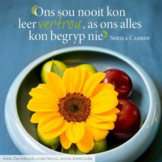 Printable Quotes, Afrikaans, True Stories, Inspirational Quotes, Hart, Bible, Printables, Wisdom, Sayings