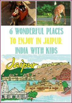 The capital city of Rajasthan, Jaipur is an amazing place to visit. There are lots of fun activities and adventurous things to do in Jaipur with Kids