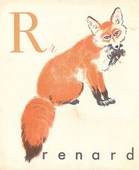 fox @Laura Jane Roland