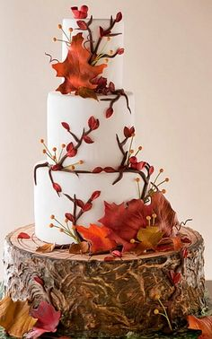 Wedding cake.. love the tree trunk idea.