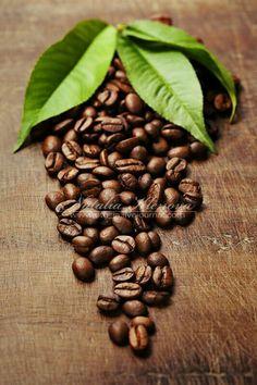 Photograph coffee beans by Natalia Klenova on Coffee Cafe, Coffee Drinks, Coffee Shop, Coffee Lovers, Mini Desserts, Green Tea Vs Coffee, Coffee Bean Art, Café Chocolate, Coffee Aroma