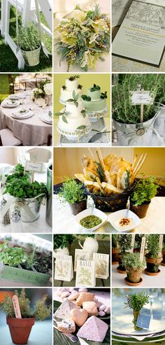 "oooo I like all these ideas for an herb wedding! - really like the bread baskets too... YUM, who doesn't love garlic [this is from Oliver: ""bnnnnnnnnnnnnnnnnnnnnnnnnnnnnnnnnnnnnnnnnnnnnnnnnnnnnnnnnnnne""] oil for bread dipping??"