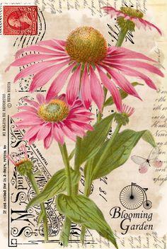 Vintage Labels, Vintage Cards, Vintage Paper, Vintage Postcards, Vintage Images, Art Floral, Floral Artwork, Decoupage Vintage, Decoupage Paper