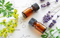Overwhelmed with all this talk of essential oils? Our essential oils guide discusses what each oil can be used for to balance out your life. Essential Oil Box, What Are Essential Oils, Essential Oils Guide, Young Living Essential Oils, Acne Oil, Sweet Almond Oil, Natural Medicine, Seed Oil, Osho