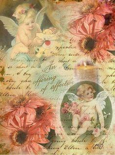 Flor e anjo