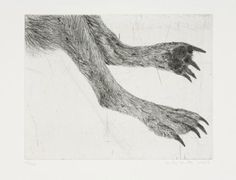Untitled (Two back legs of Wolf) by Kiki Smith