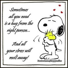 Sometimes all you need is a hug from the right person love quote hug charlie brown love quote snoopy positive quote stress Snoopy Hug, Snoopy And Woodstock, Peanuts Snoopy, Goodnight Snoopy, Peanuts Cartoon, Charlie Brown Quotes, Charlie Brown And Snoopy, Peanuts Quotes, Snoopy Quotes