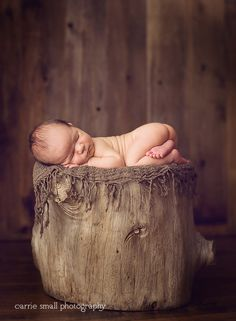 I love this tree stump idea... but I do NOT like naked baby butts, so he/she would definitely have a diaper cover on.