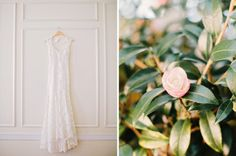 Burge Plantation Wedding : Taylor &  Caroline