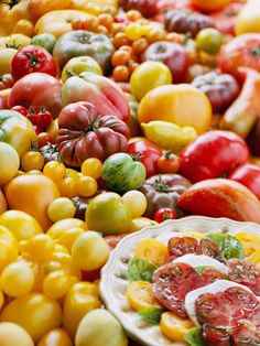 The best tomatoes to grow in your vegetable garden.