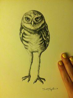 Burrowing Owl 16x20 pencil drawing by ArtbySarahEngland on Etsy, $60.00