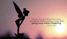 never say goodbye because goodbye means going away and going away means forgetting - peter pan