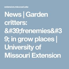 News | Garden critters: 'frenemies' in grow places   | University of Missouri Extension
