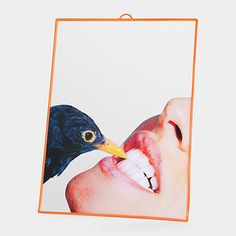 Maurizio Cattelan, Pierpaolo Ferrari, and Stefano Seletti: Bird Mirror | MoMAstore.org  Add a little Hitchcock flair to your teeth brushing routine with this MoMA-exclusive mirror. The slightly menacing image has been pulled from the pages of Maurizio Cattelan and Pierpaolo Ferrari's provocative image-only magazine Toilet Paper. Cattelan is a celebrated artist, whose work is featured in MoMA's Collection.