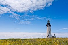 A beautiful day along at the Yaquina Head Lighthouse in Newport, Oregon.
