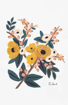 Marigold Botanical Art Print - Rifle Paper Co Art And Illustration, Floral Illustrations, Botanical Illustration, Art Floral, Flower Graphic, Floral Artwork, Floral Prints, Painting Inspiration, Art Inspo