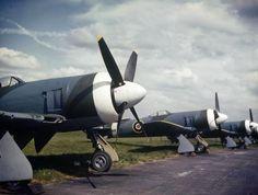 Royal Air Force Hawker Tempest Mk II lined up at the Hawker Aircraft Ltd factory at Langley, Berkshire, England - 1945