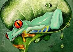"""""""Happy Tree Frog"""" ACEO Miniature painting done in colored pencil and ink ~ by Melody Lea Lamb Art Carte, Frog Art, Art Original, Tropical Art, Color Pencil Art, Tree Frogs, Mini Paintings, Artist Trading Cards, Wildlife Art"""