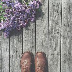 Flowery wednesday  #vsco #vscogood #vsco_grid #vscogoodshot #invscogram #nothingisordinary #instagood #flowers