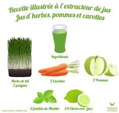 Jus d'herbes, pommes et carottes