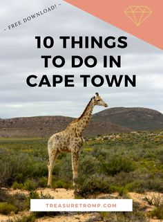 10 things to do while in Cape Town, South Africa.
