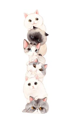 Cat Phone Wallpaper, Cute Cat Wallpaper, Kittens Cutest, Cute Cats, Cats And Kittens, Chibi Cat, Dibujos Cute, Cute Animal Drawings, Cute Cartoon Wallpapers