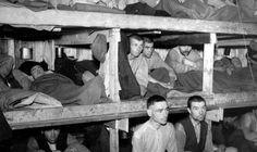 DØDE PÅ NORSK JORD: Under andre verdenskrig ble om lag 100.000 sovjetiske krigsfanger sendt til Norge. 13 700 av dem døde på norsk jord.