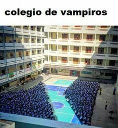 New memes en espanol chistosos ideas Vampire High School, Funny Images, Funny Pictures, Funny Spanish Memes, Northwestern University, New Memes, Animal Jokes, Paphos, Haha