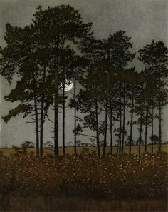 Moonlight, 1976 by Phil Greenwood on Curiator, the world's biggest collaborative art collection. Abstract Nature, Abstract Landscape, Landscape Paintings, Gravure Illustration, Illustration Art, Encaustic Art, Anime Comics, Tree Art, Aesthetic Pictures