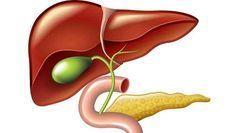 La Única Bebida que Deja tu Hígado sin Grasa fue Descubierta por un Médico que la Oculto por Años. – Super Remedios