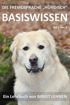 "Die Fremdsprache ""Hündisch"" - Basiswissen Teil 1 von [Lehnen, Birgit] Me And My Dog, Your Dog, Cat Dog, That One Friend, Dogs Of The World, Diy Stuffed Animals, Dog Love, Labrador Retriever, Puppies"