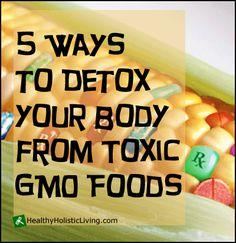 5 Ways to Detox Your Body from Toxic GMO Foods -  1. Psyllium husk, 2. Organic sulfur/MSM, 3. Probiotics, 4. Cascara sagrada/sacred bark, 5. Wild burdock Root