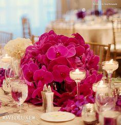 True Love, True Luxury: Julia & Will